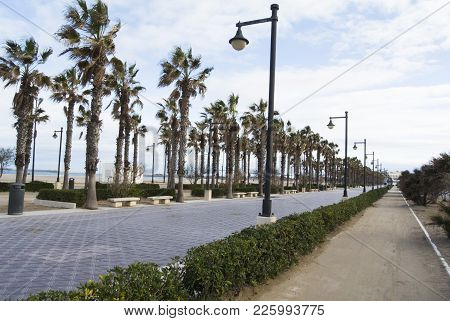 The Boulevard And Seafront Of Valencia, Spain