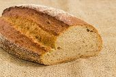 Partly cut oval loaf of the wheat and rye sprouted bread with added whole sprouted wheat grains, rye malt and molasses lying on a sackcloth with selective focus poster