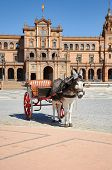 Horse drawn carriage tour donkey at Plaza España, Seville, Andalusia, Spain poster