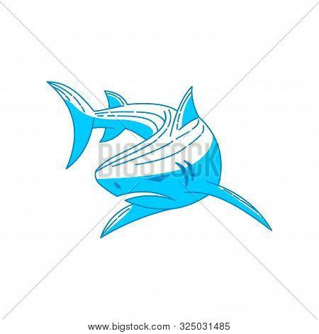 Shark Logo Design Vector Icon Outline Isolated Illustration