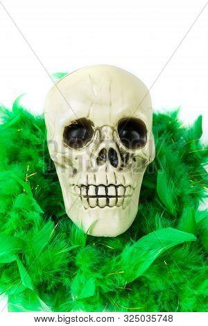 Bony Skull Wearing A Green Feather Boa Over White