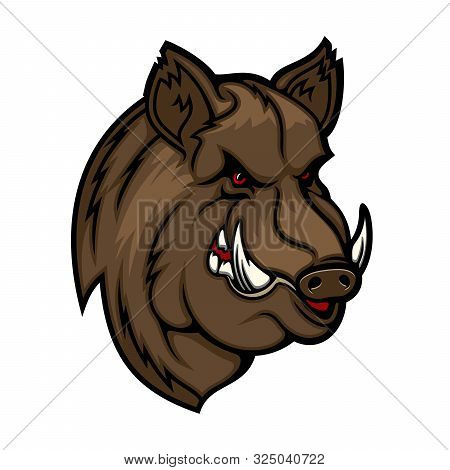 Wild Boar, Pig Or Hog Mascot With Head Of Forest Animal. Vector Icon Of Angry Swine With Evil Grin,