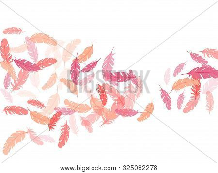 Majestic Pink Flamingo Feathers Vector Background. Detailed Majestic Feather On White Design. Plumag