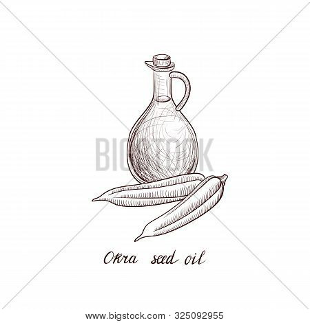 Vector Drawing Okra Seed Oil, Bottle Of Vegetable Oil And Okra, Hand Drawn Illustration