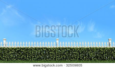 White Fence And Hedge On Blue Sky