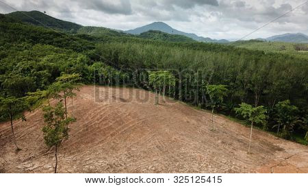 Deforestation. Aerial photo of destroyed forest environment