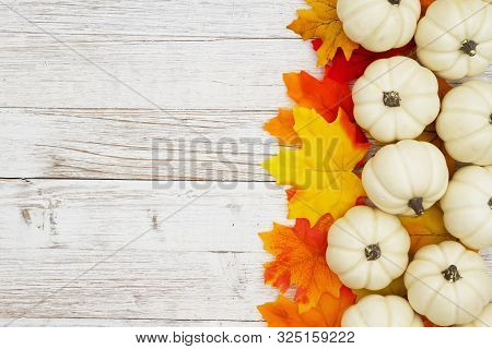 White Pumpkins With Fall Leaves On Weathered Whitewash Wood Textured Background With Copy Space For