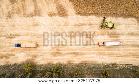 Aerial View Of A Combine That Unloads Grain From Its Grain Compartment Into A Truck Van. One Truck D