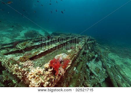 Remains and cargo of the Yolanda  in the Red Sea.