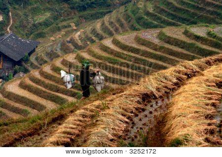 Long Ji Village China