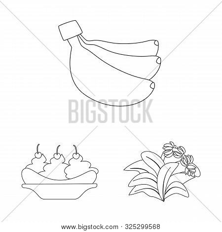 Isolated Object Of Organic And Potassium Logo. Set Of Organic And Diet Stock Vector Illustration.