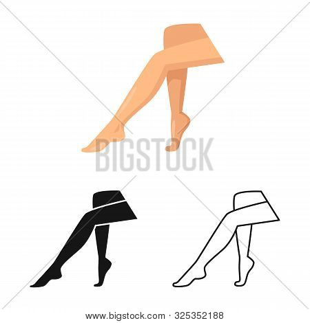 Vector Illustration Of Leg And Lady Logo. Set Of Leg And Pinup Stock Symbol For Web.