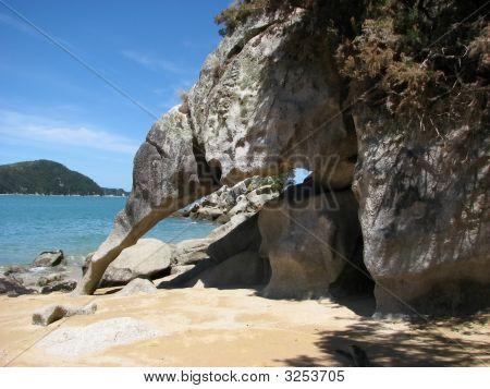 Kiwi-Rock