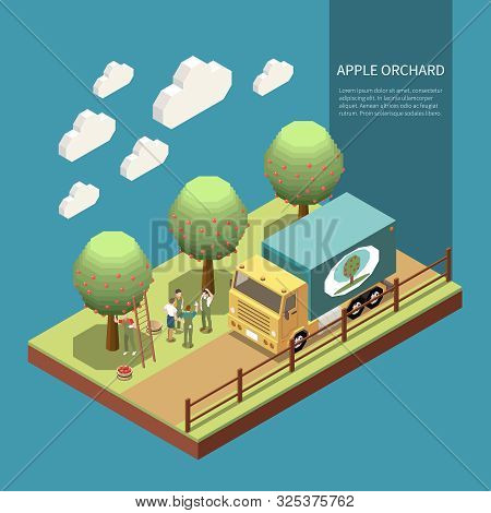 Apple Orchard In Garden Isometric Composition With Farmers Engaged In Harvesting Of Fruits And Loadi