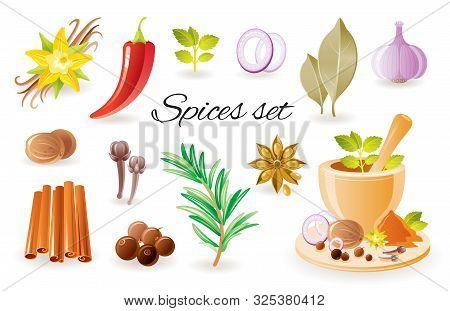 Spice Herb Icon Set With Garlic, Cinnamon, Chilli Papper, Bay Leaf, Vanilla Flower, Rosemary, Mint,