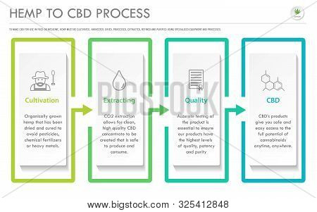 Hemp To Cbd Process Horizontal Business Infographic Illustration About Cannabis As Herbal Alternativ