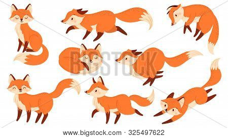 Cartoon Red Fox. Funny Foxes With Black Paws, Cute Jumping Animal. Foxy Character, Predator Fox Masc