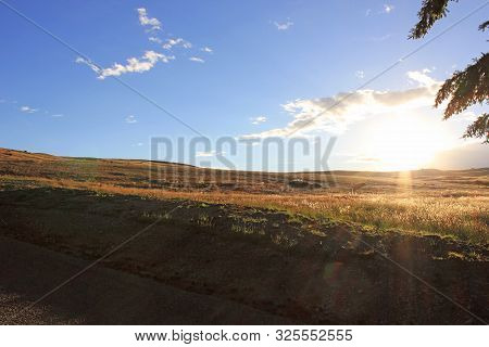 Sunset over the grassland of canterbury, new zealand