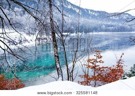 Beautiful Winter Landscape. Frozen Lake With Turquoise Crystla Water. Red Leaves Bushes And Apls Mou