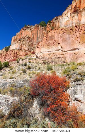 Wildflowers grow beneath steep cliffs at Fremont Indian State Park of Utah. poster