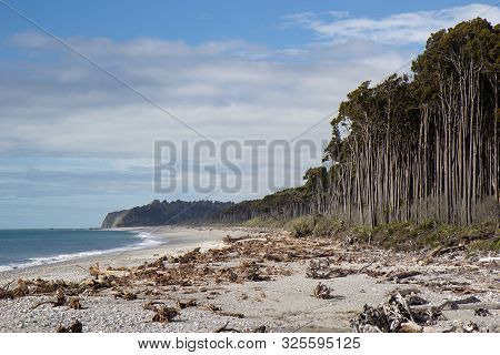 View Of Bruce Beach, West Coast Of New Zealand