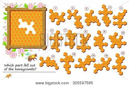 Logical Puzzle Game For Children And Adults. Which Part Fell Out Of The Honeycombs? Printable Page F