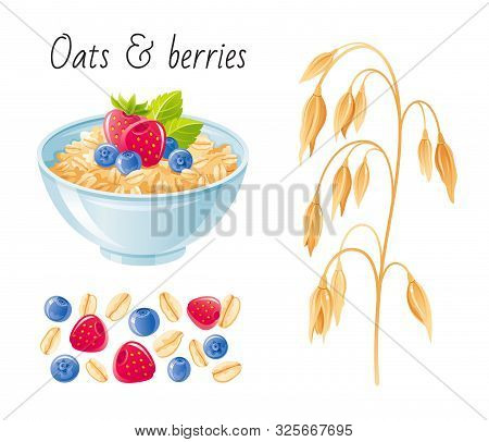 Oat Meal Fruit Berry Set. Bowl, Oatmeal Ear, Flake, Strawberry. Breakfast Cup, Oat Grain Porridg, Mu