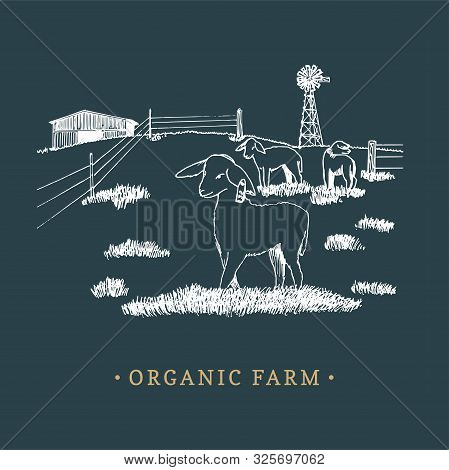Organic Farm Vector Illustration. Sketched Drawing Of Rural Landscape For Family Farm Logotype, Eco