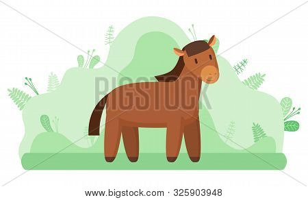 Livestock Animal Or Horse, Farming And Agriculture Vector. Mustang Or Stallion, Ranch Or Farm At Cou