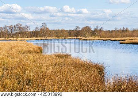 Landsacape Nature Park Fochteloerveen In The Netherlands