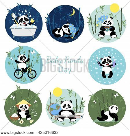 Baby Panda Collection. Set With Little Cute Pandas. The Panda Learns, Rides A Bike, Brushes His Teet