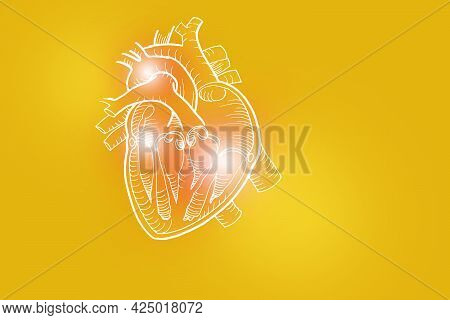 Handrawn Illustration Of Human Heart On Yellow Background. Medical, Science Set With Main Human Orga