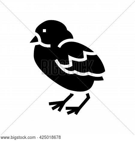 Chick Bird Glyph Icon Vector. Chick Bird Sign. Isolated Contour Symbol Black Illustration