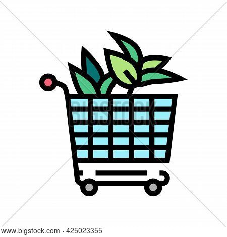 Buying Plant In Floral Store Color Icon Vector. Buying Plant In Floral Store Sign. Isolated Symbol I