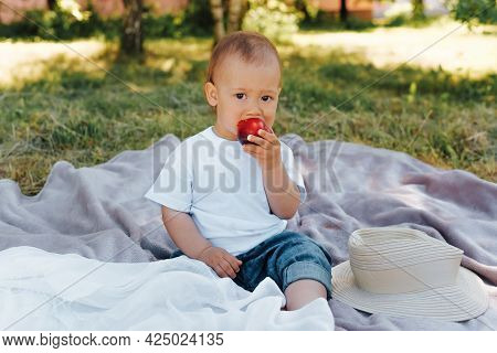 Adorable Little Boy With A Funny Expression Eating A Peach At A Picnic. Portrait Of A Child Sitting