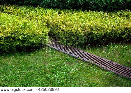 Grate Drainage System On The Lawn With Green Grass And Bushes In The Backyard Garden, Rainwater Drai