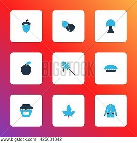 Season Icons Colored Set With Jam, Hazelnut, Apple And Other Champignon Elements. Isolated Vector Il