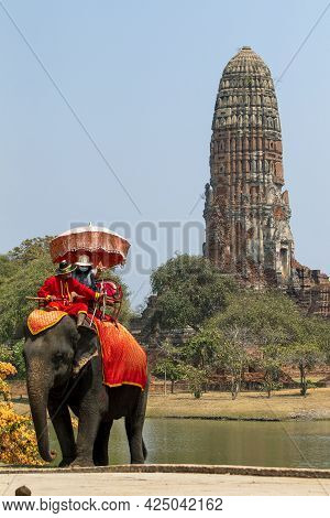 Elephants That Are Taking Tourists To Walk Through Ancient Historical Architecture In Ayutthaya Hist