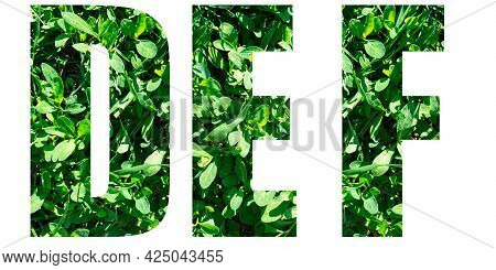 English Alphabet Letters Set. Letters D E F From Green Grass Isolated On White Background. Elements