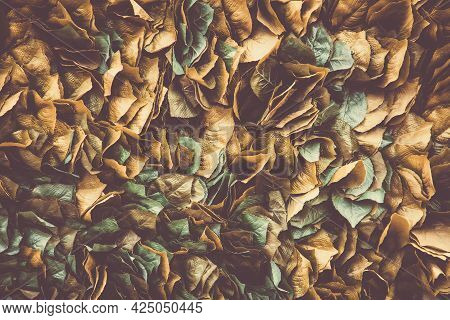 Background Of Stale Leaf On The Wall, Fall Nature Background, Artificial Foliage Texture.