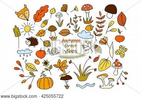 Set With Autumn Forest Elements. Fall Doodles Of Mushrooms, Yellow And Red Leaves, Forest Inhabitant