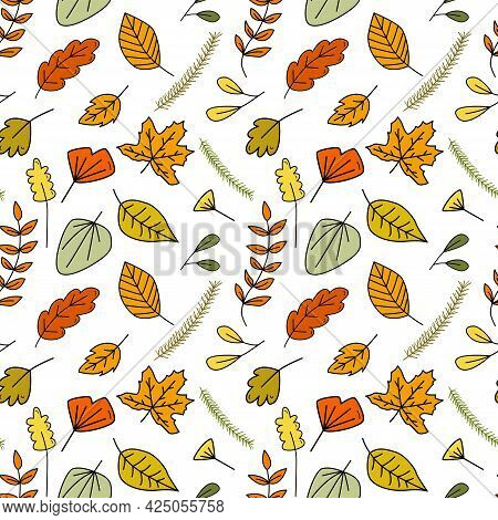 Seamless Doodle Pattern With Forest Autumn Colorful Leaves And Spruce Branches. Hand Drawn Vector Il