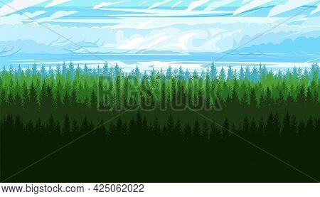 Coniferous Forest Silhouette. Wild Trees. Pine, Cedar, Spruce, Fir, Larch. Dark Sky. Siberian Taiga.