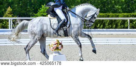 Dressage Horses And Riders In Uniform. Horizontal Banner For Website Header Design. Equestrian Sport