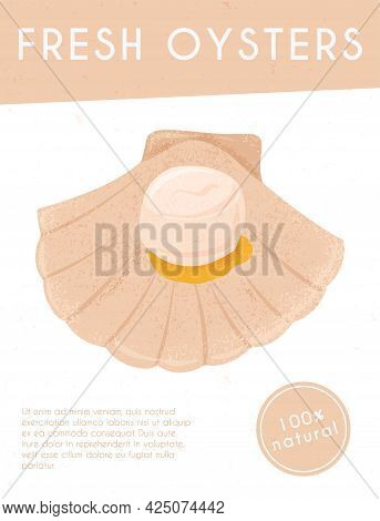 Fresh Tasty Seafood, Scallop In Seashell Vector Hand Drawn Banner Concept With Space For Text.