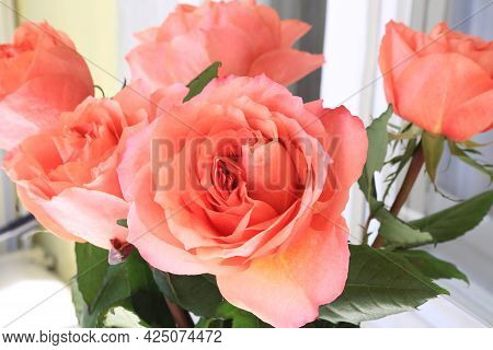 Close-up Of Beautiful Bouquet Of Delicate Coral Color Roses