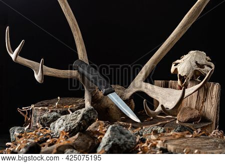 Knife On The Background Of A Deer Horn. Deer Antlers And Beaver Skull. Hunting Knife. Front View.