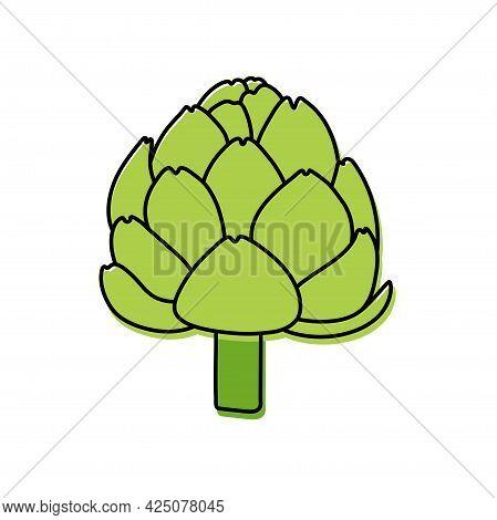 Artichoke. Vegetable Sketch. Color Simple Icon. Hand Drawn Vector Doodle Illustration