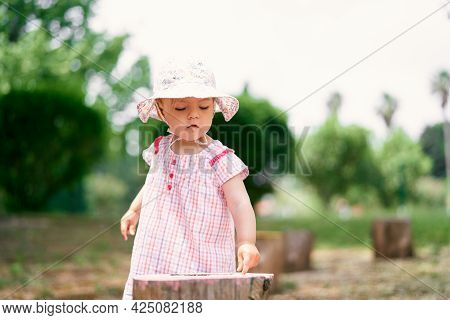 Little Girl In A Panama Hat Stands On The Lawn Near The Stump
