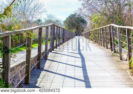Wooden Footbridge For Walking In Nature Reserve . Parc Natural De S'albufera De Mallorca . Nobody On